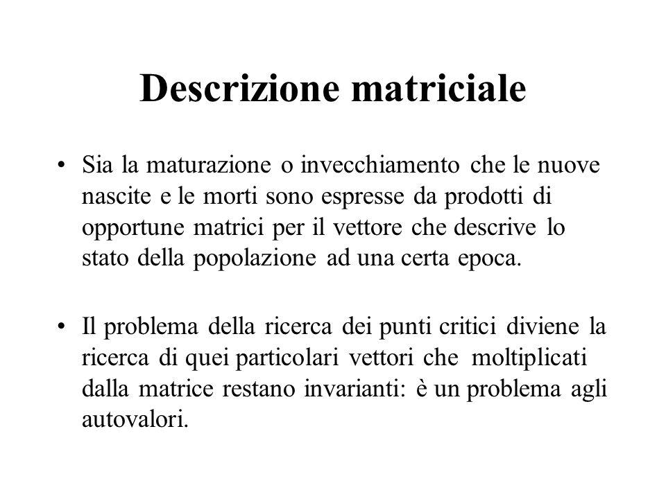Descrizione matriciale