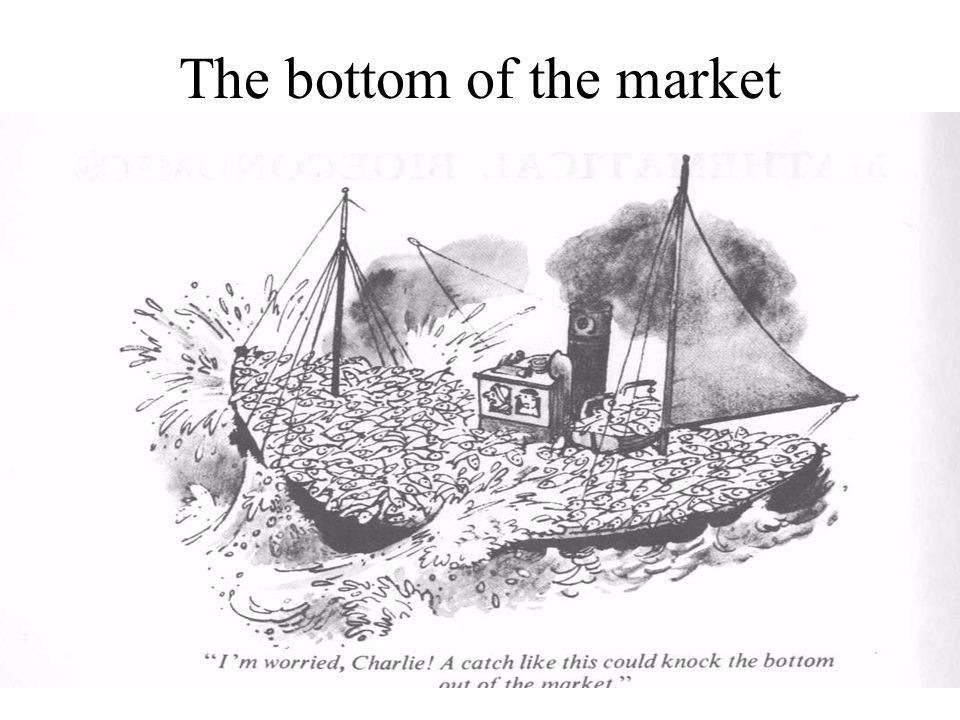 The bottom of the market