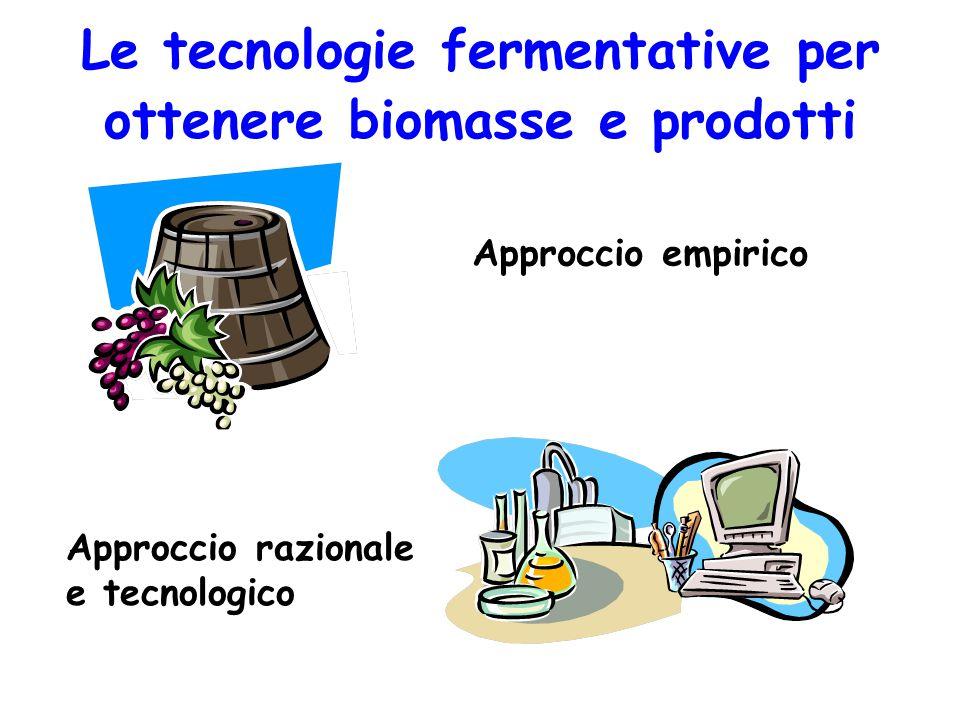 Le tecnologie fermentative per ottenere biomasse e prodotti