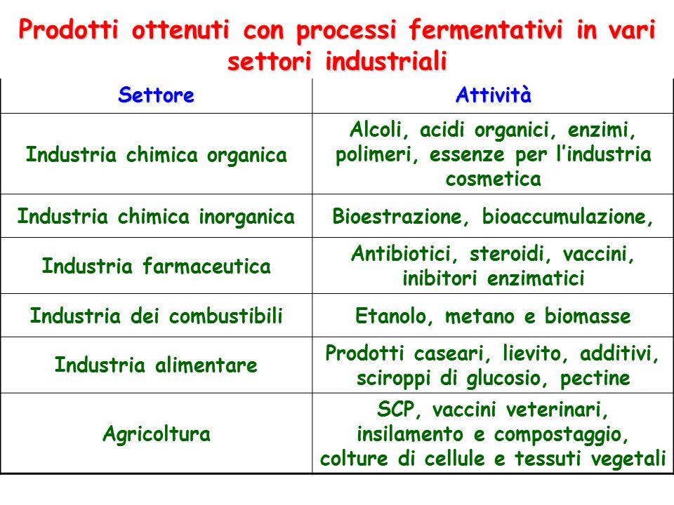 Prodotti ottenuti con processi fermentativi in vari settori industriali