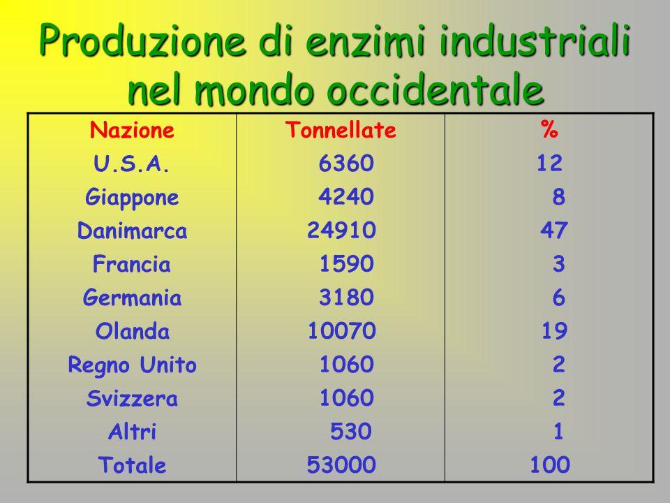 Produzione di enzimi industriali nel mondo occidentale