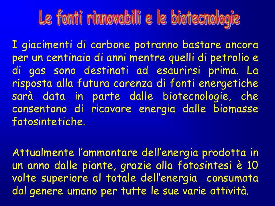 Le fonti rinnovabili e le biotecnologie