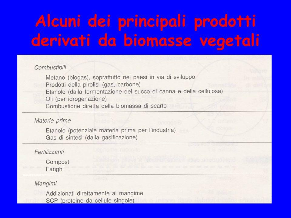 Alcuni dei principali prodotti derivati da biomasse vegetali