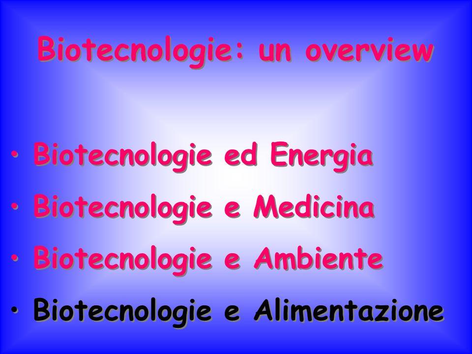 Biotecnologie: un overview