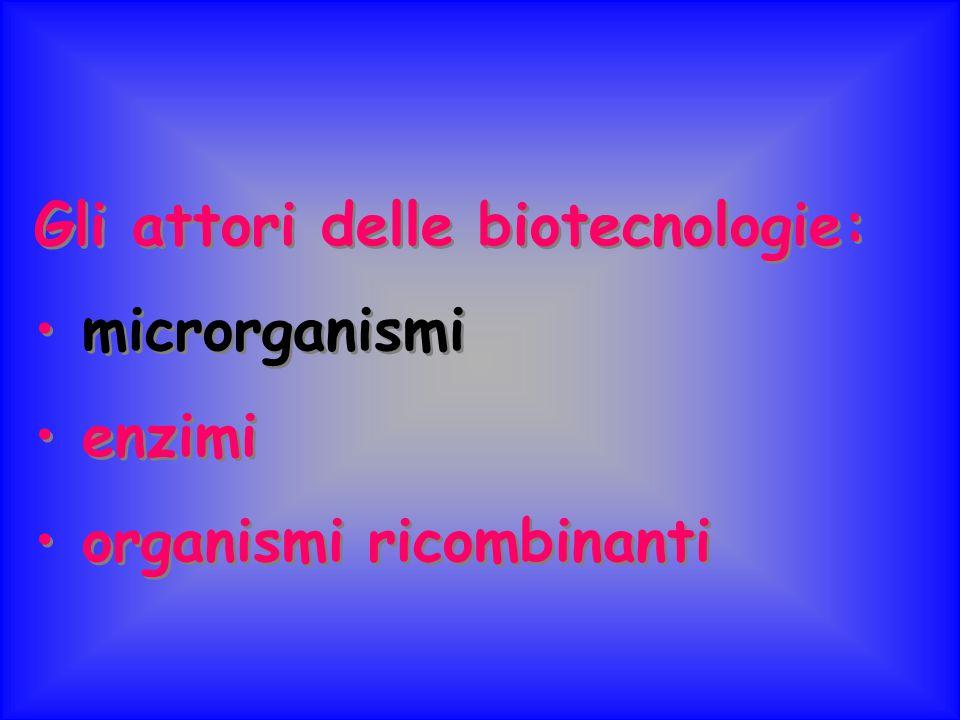 Gli attori delle biotecnologie: