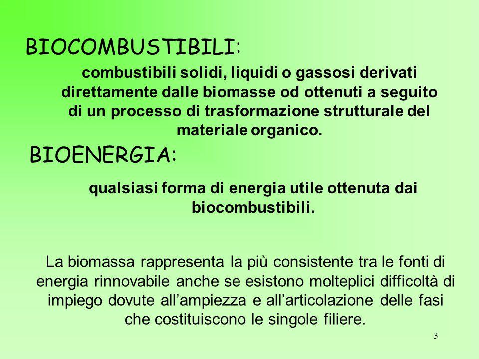 qualsiasi forma di energia utile ottenuta dai biocombustibili.