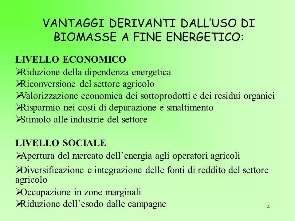 VANTAGGI DERIVANTI DALL'USO DI BIOMASSE A FINE ENERGETICO: