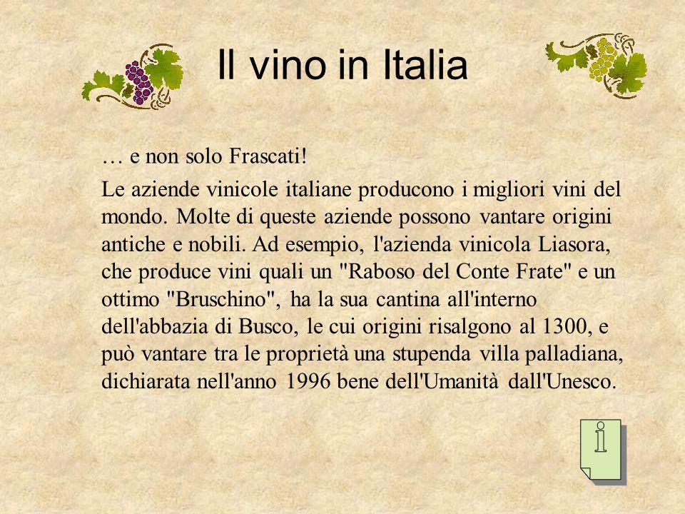 Il vino in Italia … e non solo Frascati!