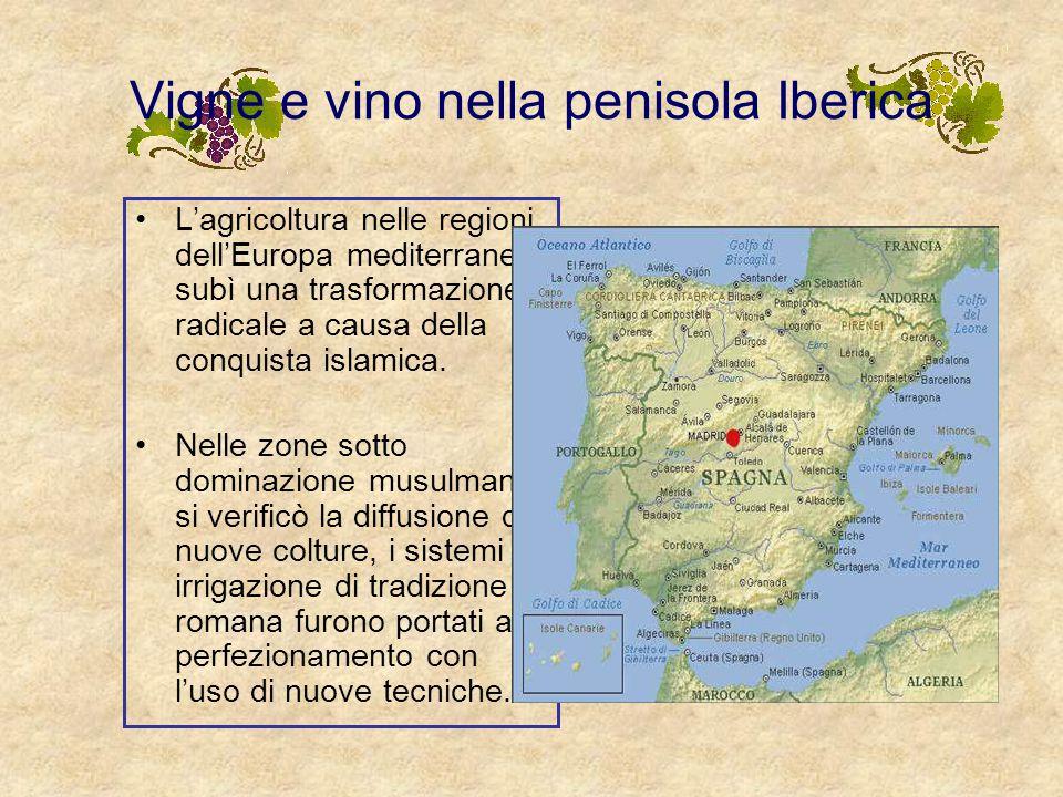 Vigne e vino nella penisola Iberica