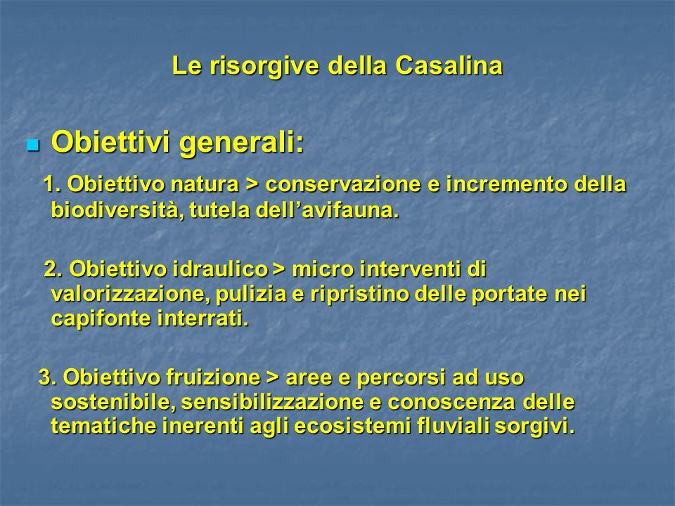 Le risorgive della Casalina