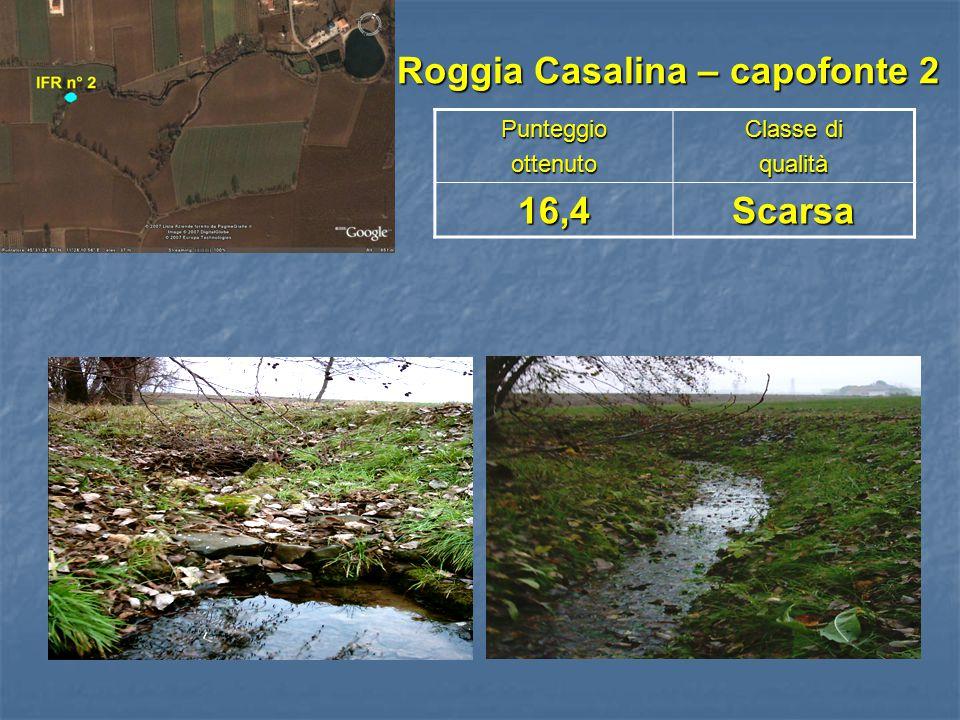 Roggia Casalina – capofonte 2
