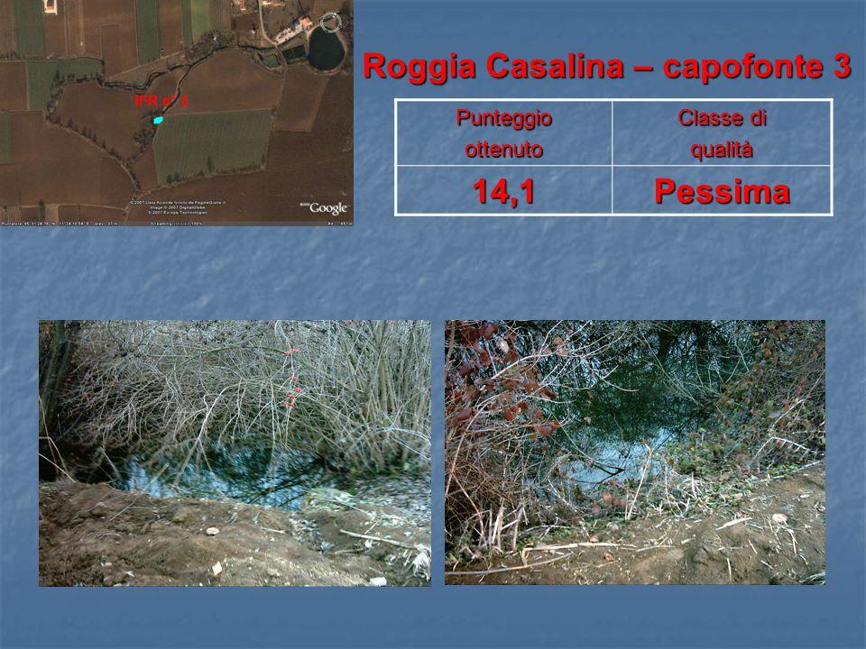 Roggia Casalina – capofonte 3