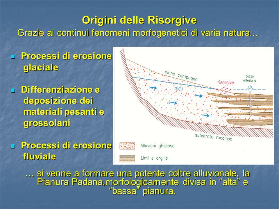 Origini delle Risorgive