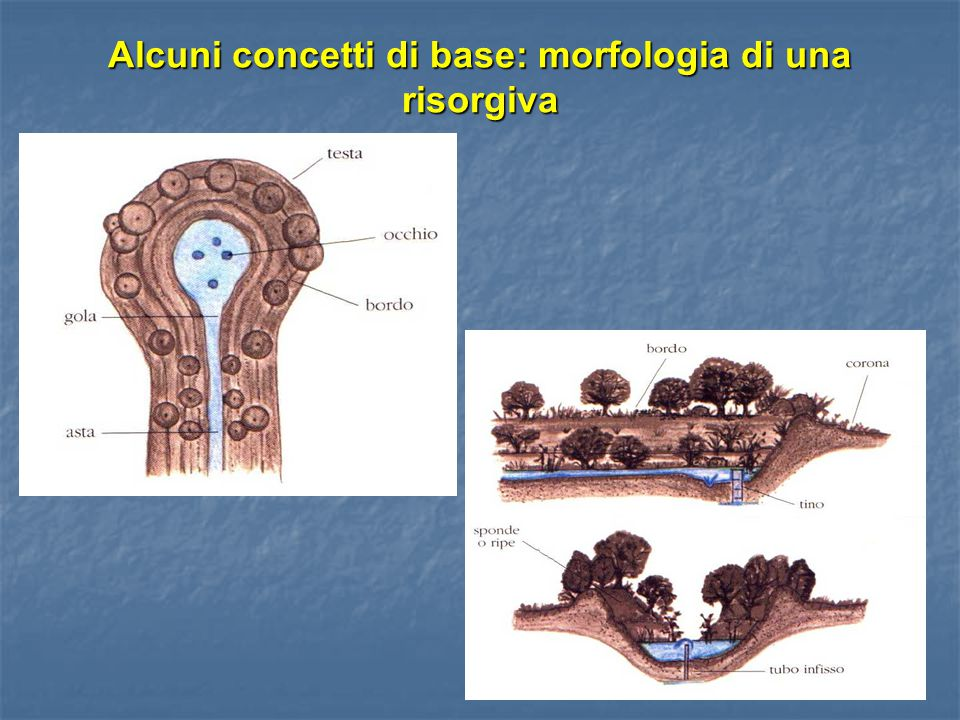 Alcuni concetti di base: morfologia di una risorgiva