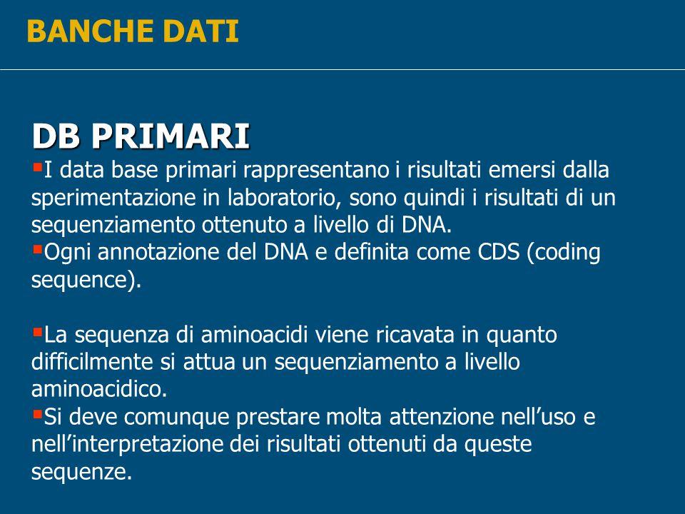 BANCHE DATI DB PRIMARI.