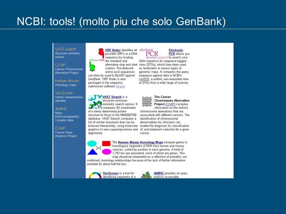 NCBI: tools! (molto piu che solo GenBank)