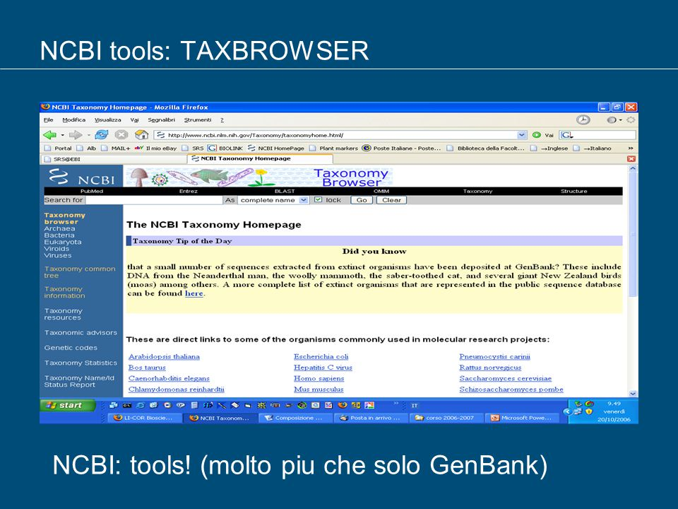 NCBI tools: TAXBROWSER