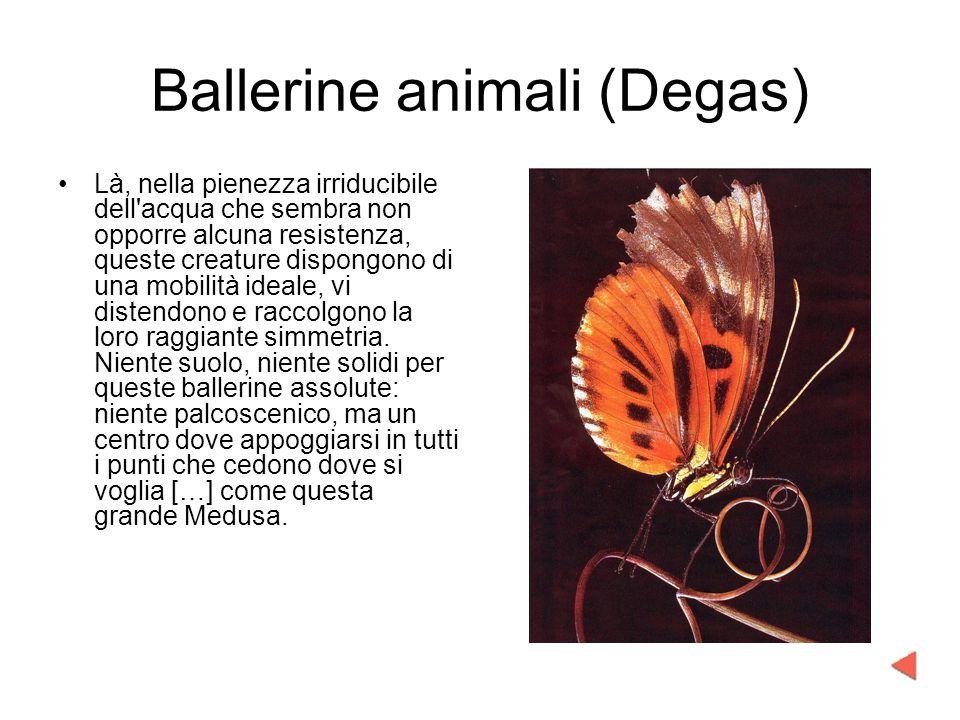 Ballerine animali (Degas)