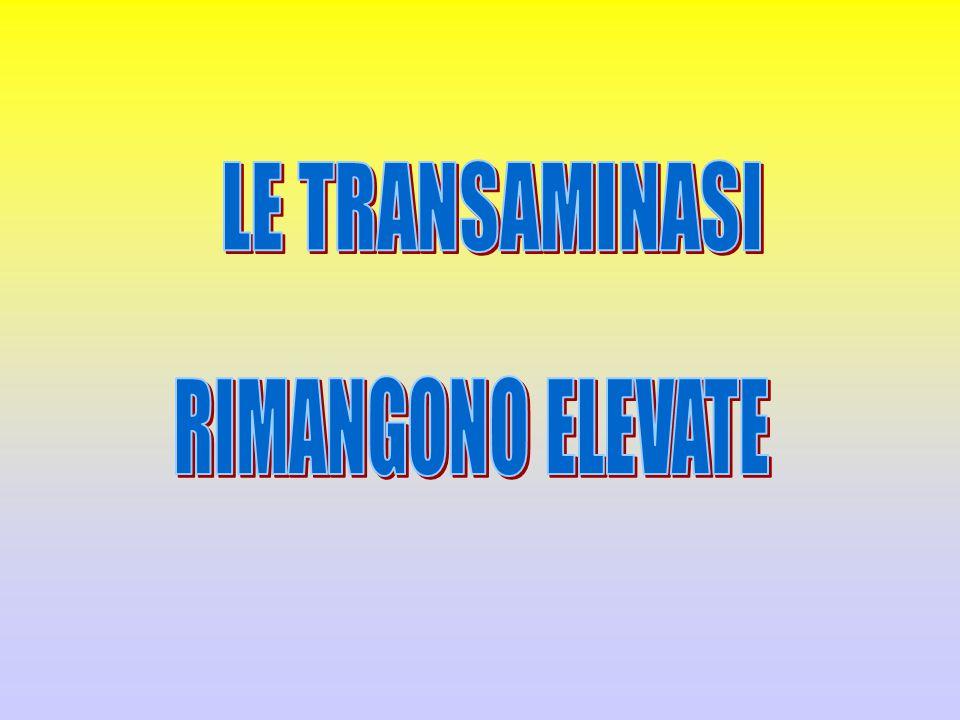 LE TRANSAMINASI RIMANGONO ELEVATE