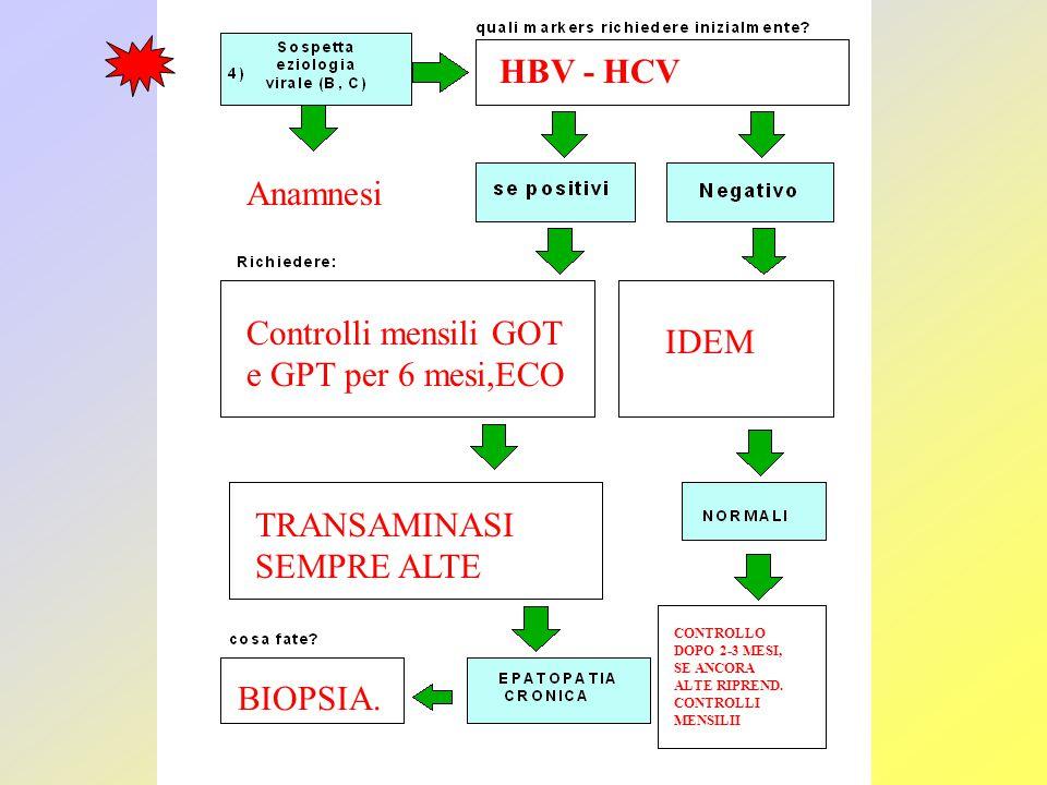 Controlli mensili GOT e GPT per 6 mesi,ECO IDEM