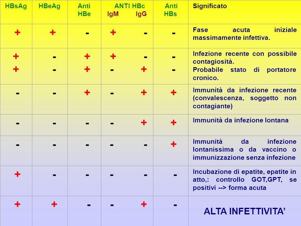 + - + - - + - - ALTA INFETTIVITA' HBsAg HBeAg Anti HBe ANTI HBc