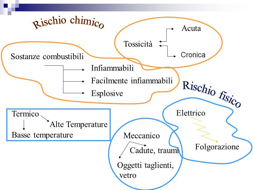 Rischio chimico Rischio fisico Acuta Tossicità Sostanze combustibili