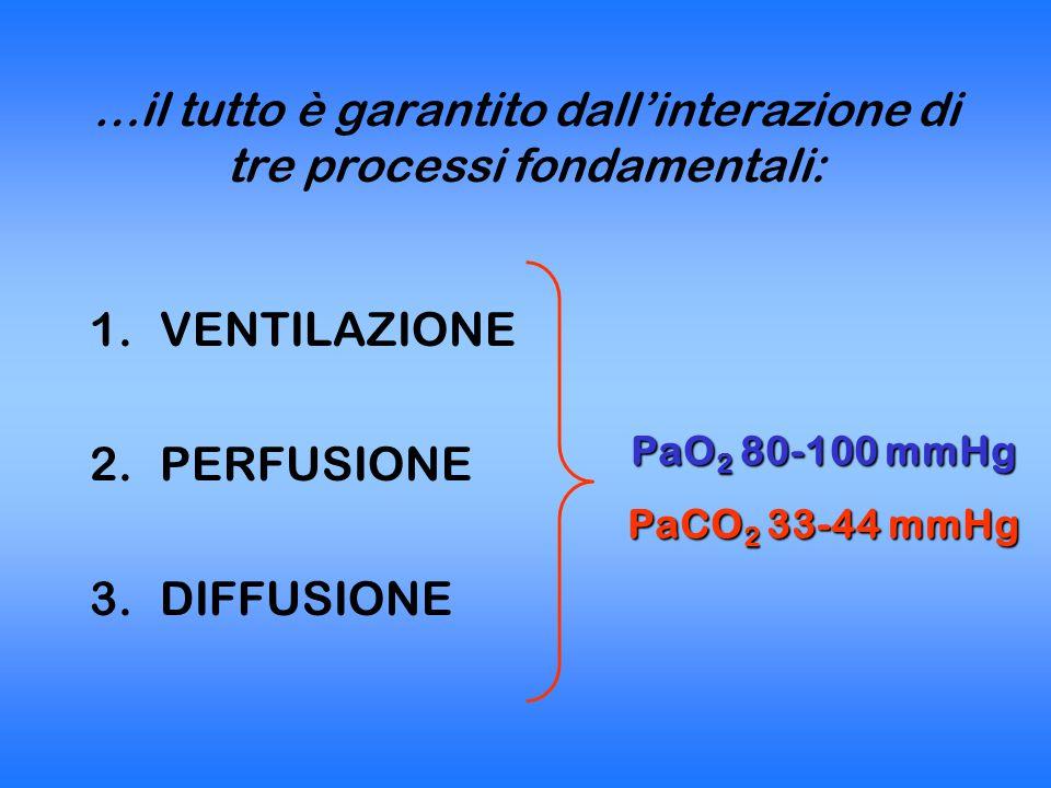 …il tutto è garantito dall'interazione di tre processi fondamentali: