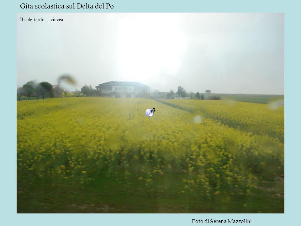 Gita scolastica sul Delta del Po