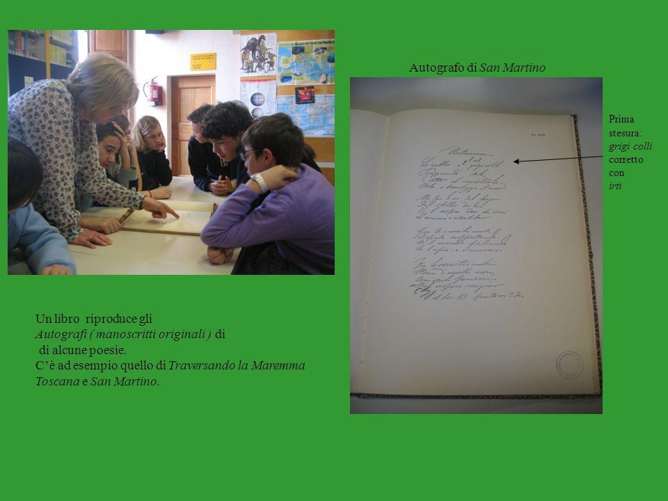 Autografo di San Martino
