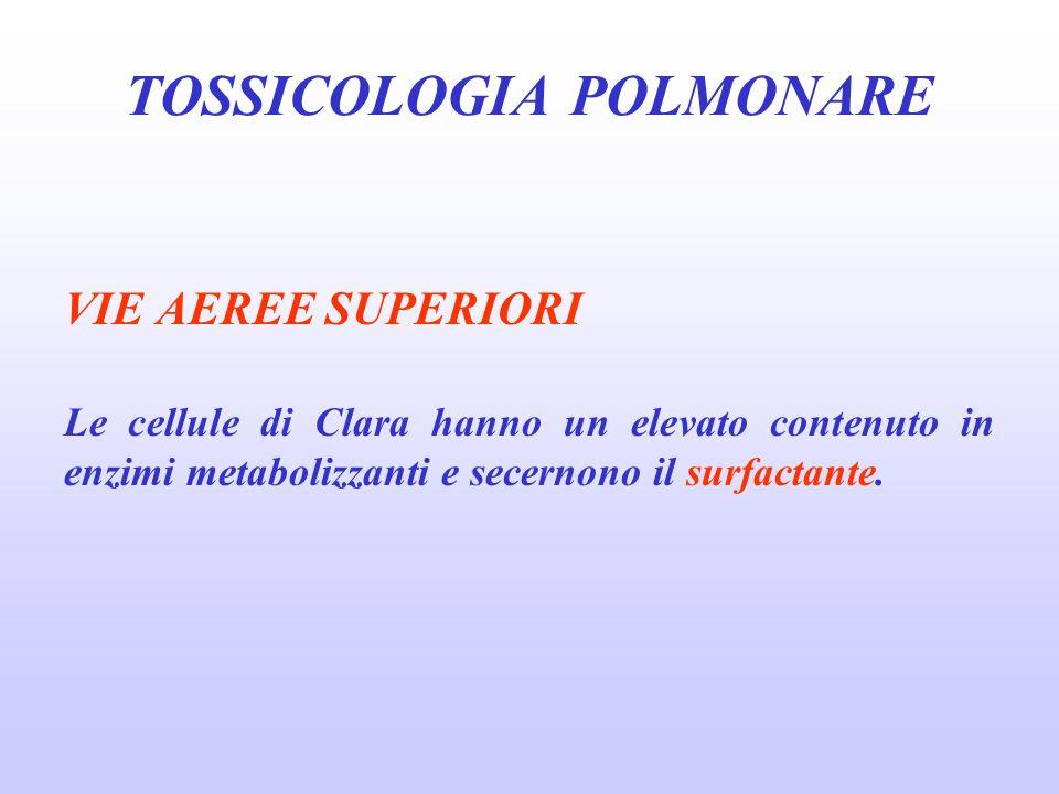 TOSSICOLOGIA POLMONARE