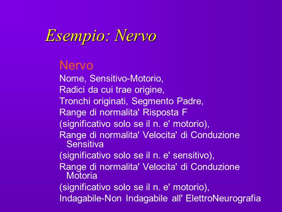 Esempio: Nervo Nervo Nome, Sensitivo-Motorio,
