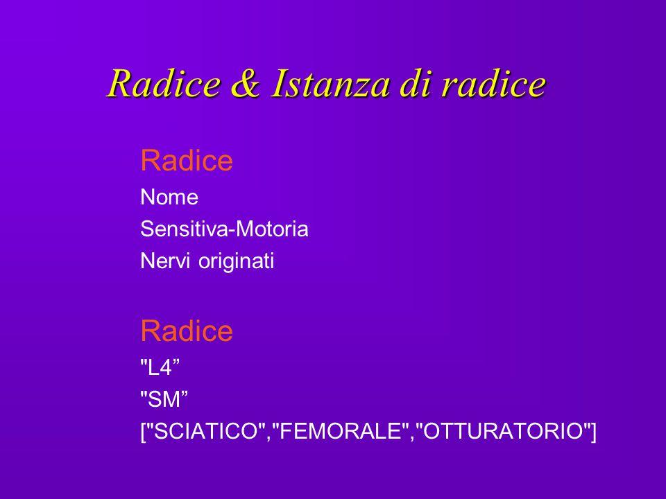 Radice & Istanza di radice
