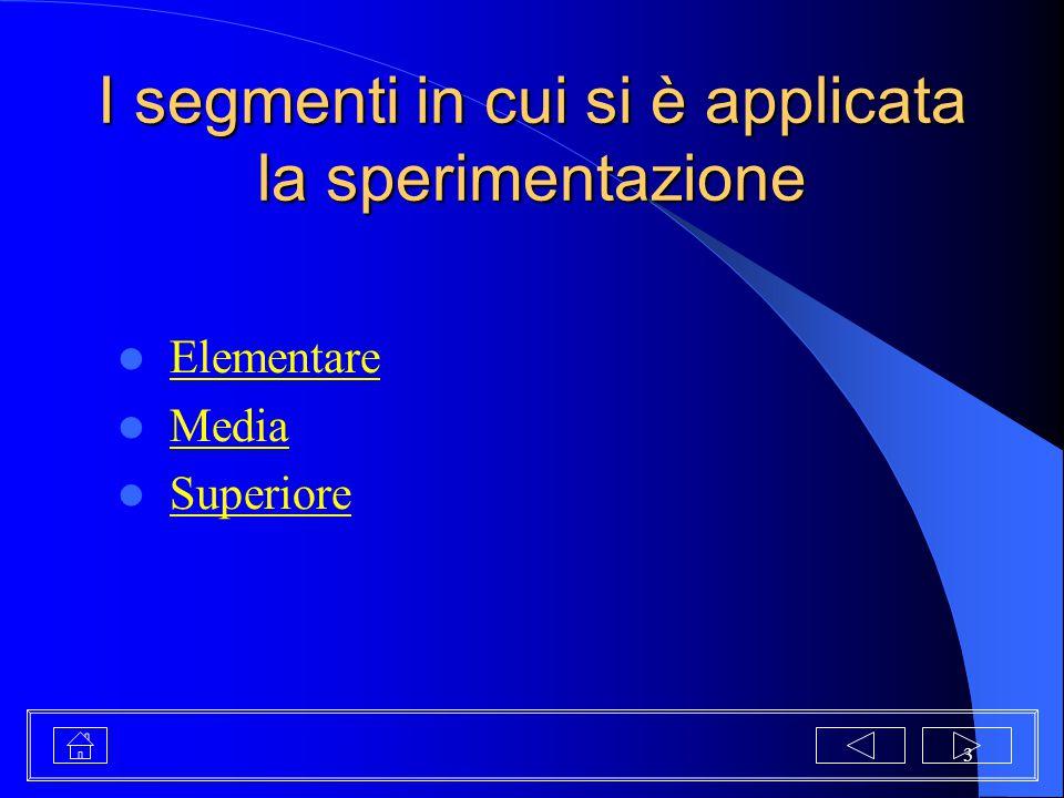I segmenti in cui si è applicata la sperimentazione
