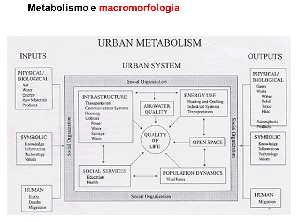Metabolismo e macromorfologia