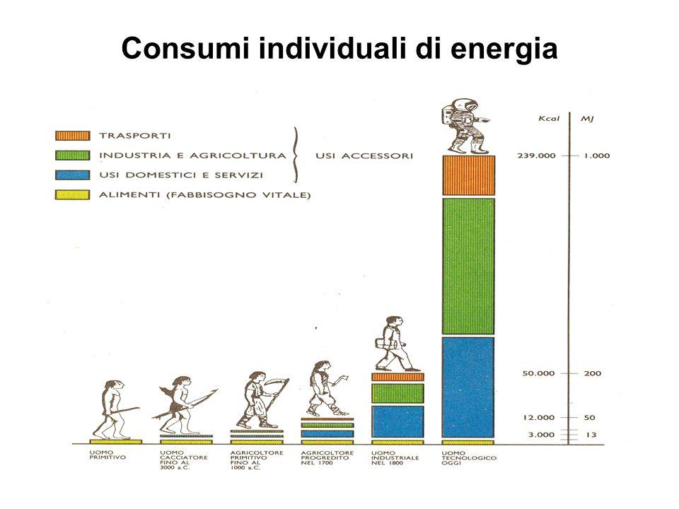 Consumi individuali di energia