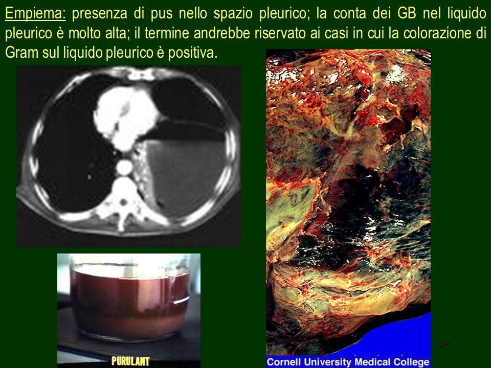 Empiema: presenza di pus nello spazio pleurico; la conta dei GB nel liquido pleurico è molto alta; il termine andrebbe riservato ai casi in cui la colorazione di Gram sul liquido pleurico è positiva.