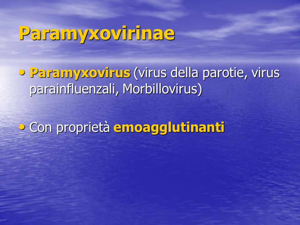Paramyxovirinae Paramyxovirus (virus della parotie, virus parainfluenzali, Morbillovirus) Con proprietà emoagglutinanti.