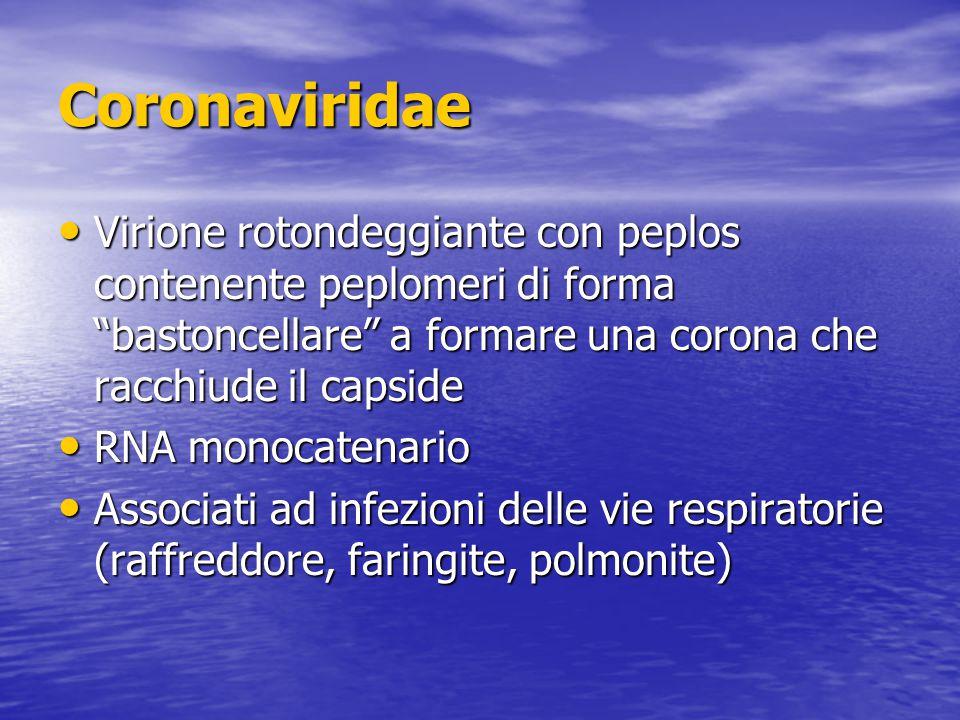 Coronaviridae Virione rotondeggiante con peplos contenente peplomeri di forma bastoncellare a formare una corona che racchiude il capside.