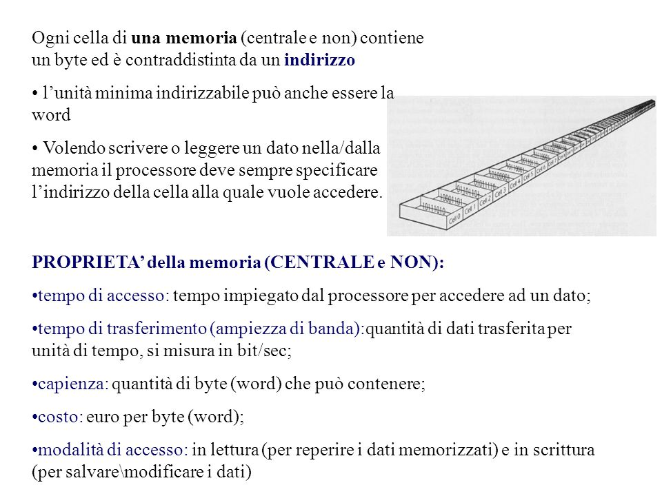 Ogni cella di una memoria (centrale e non) contiene un byte ed è contraddistinta da un indirizzo
