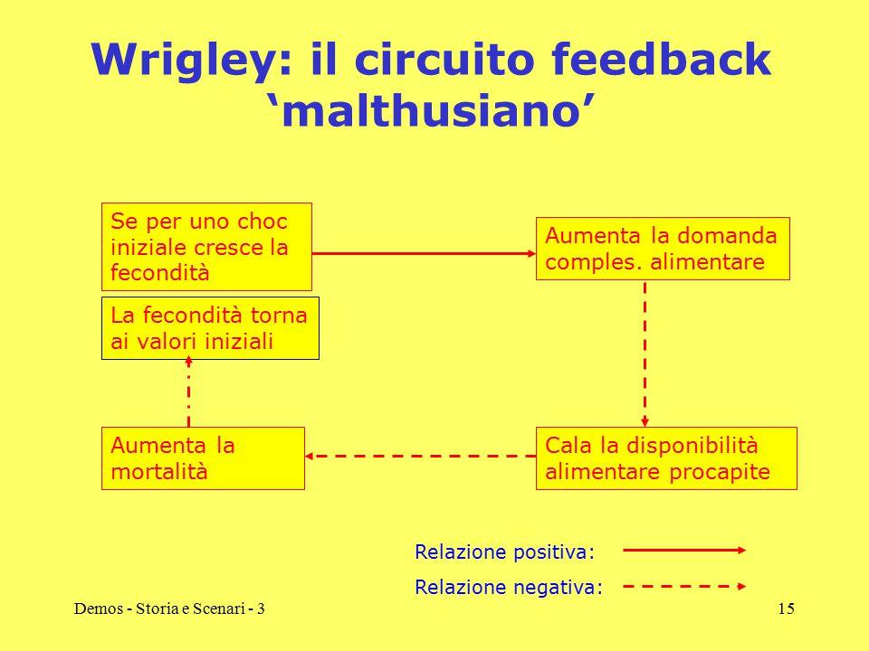 Wrigley: il circuito feedback 'malthusiano'