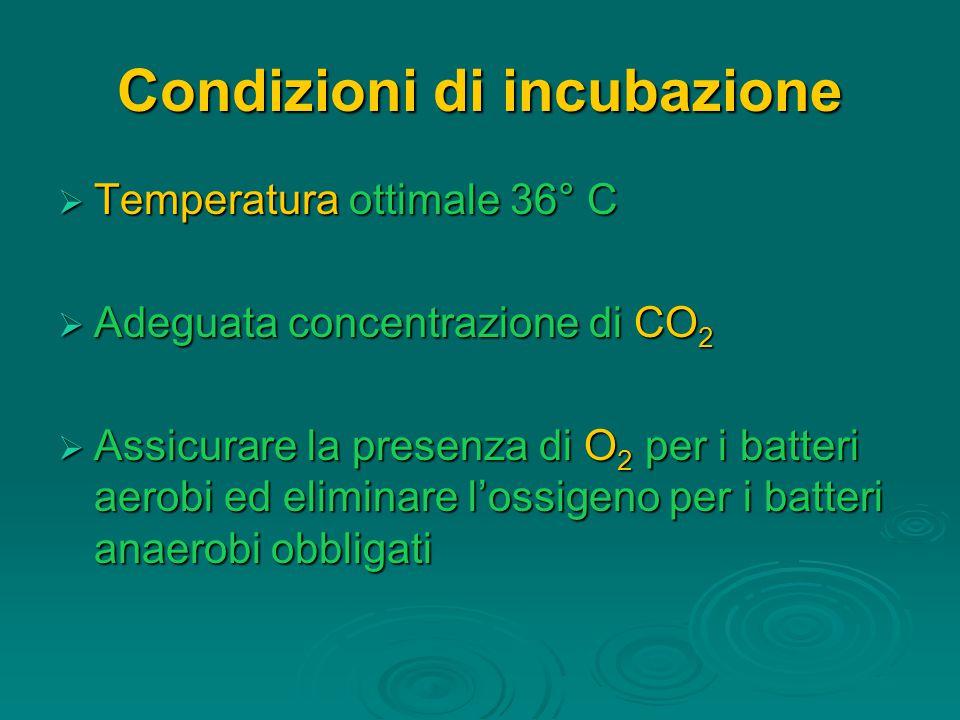 Condizioni di incubazione