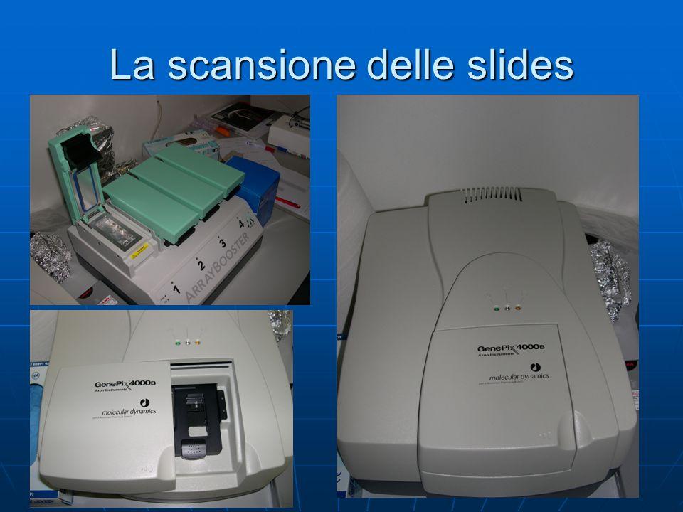 La scansione delle slides