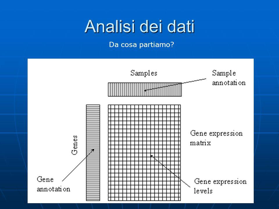 Analisi dei dati Da cosa partiamo