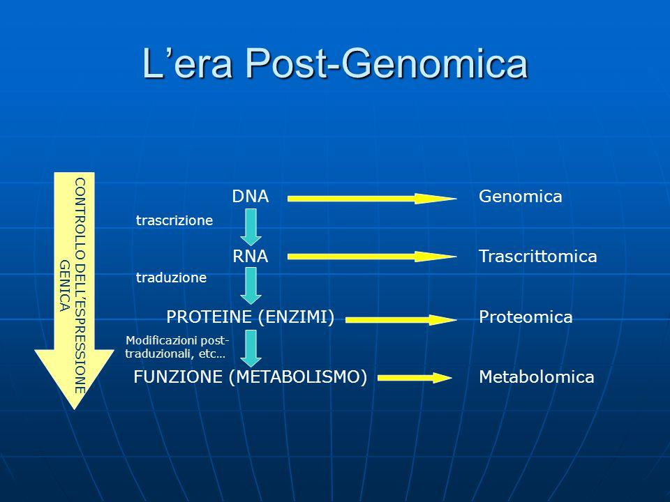 L'era Post-Genomica DNA RNA PROTEINE (ENZIMI) FUNZIONE (METABOLISMO)