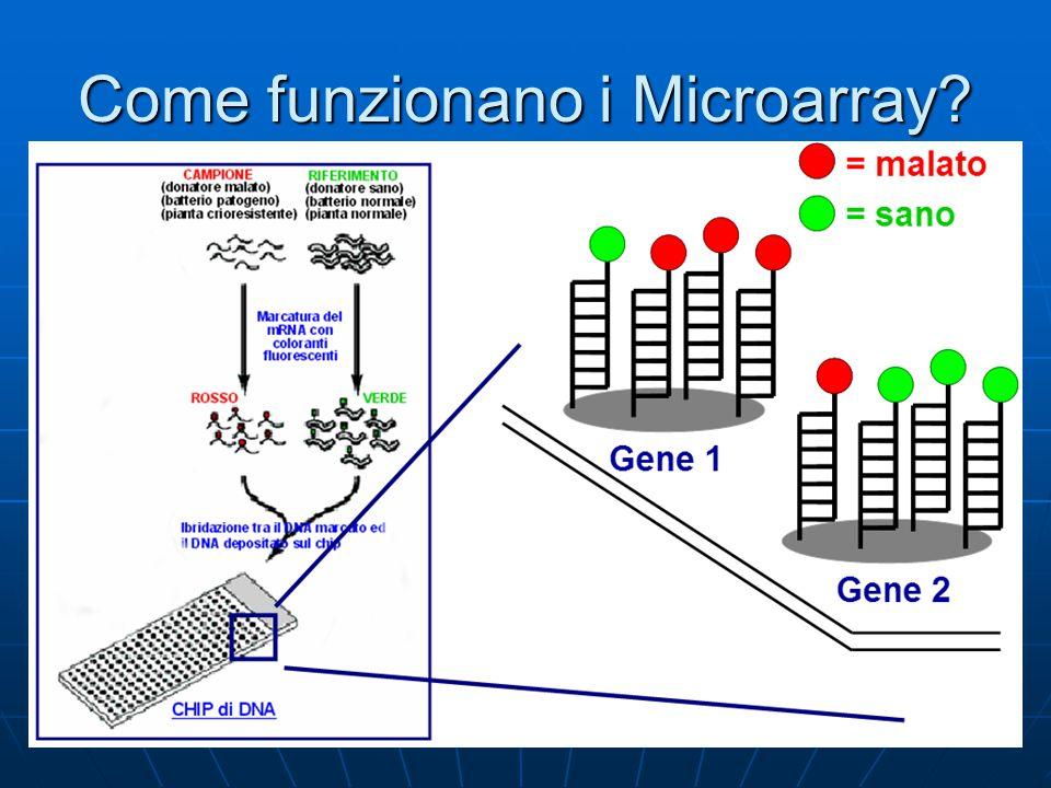 Come funzionano i Microarray