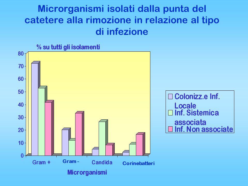 Microrganismi isolati dalla punta del catetere alla rimozione in relazione al tipo di infezione