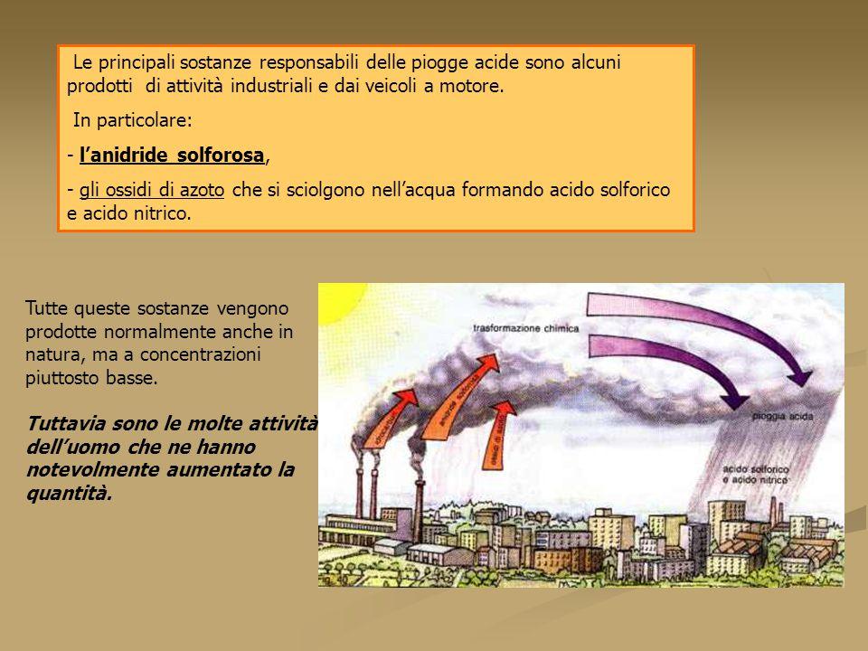 Le principali sostanze responsabili delle piogge acide sono alcuni prodotti di attività industriali e dai veicoli a motore.