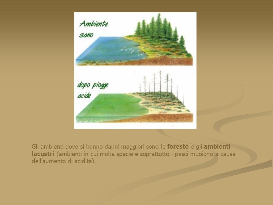 Gli ambienti dove si hanno danni maggiori sono le foreste e gli ambienti lacustri (ambienti in cui molte specie e soprattutto i pesci muoiono a causa dell'aumento di acidità).