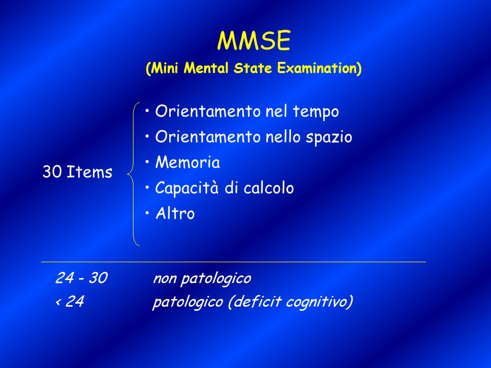 (Mini Mental State Examination)