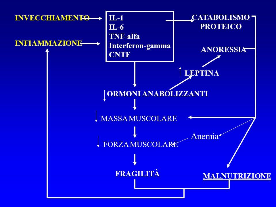 Anemia INVECCHIAMENTO IL-1 IL-6 TNF-alfa Interferon-gamma CNTF